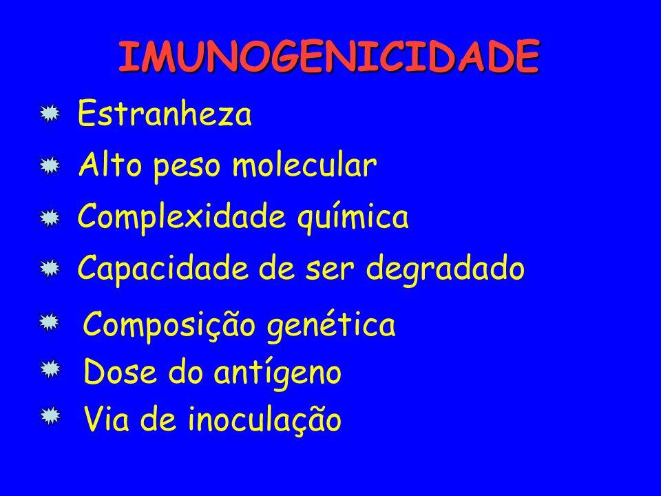 IMUNOGENICIDADE IMUNOGENICIDADE Estranheza Alto peso molecular Complexidade química Capacidade de ser degradado Composição genética Dose do antígeno V