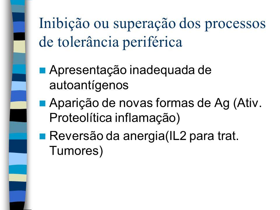 Inibição ou superação dos processos de tolerância periférica Apresentação inadequada de autoantígenos Aparição de novas formas de Ag (Ativ. Proteolíti