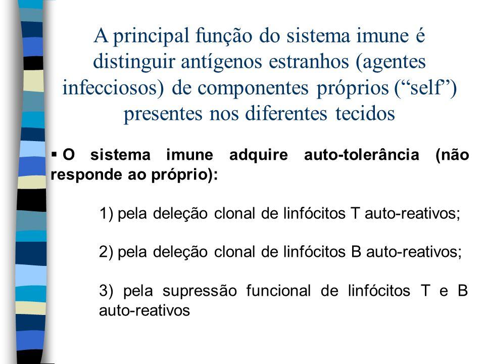 A principal função do sistema imune é distinguir antígenos estranhos (agentes infecciosos) de componentes próprios (self) presentes nos diferentes tec