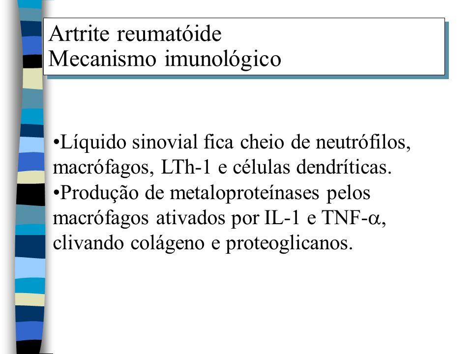 Artrite reumatóide Mecanismo imunológico Artrite reumatóide Mecanismo imunológico Líquido sinovial fica cheio de neutrófilos, macrófagos, LTh-1 e célu