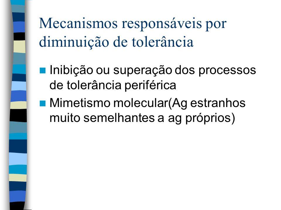 Mecanismos responsáveis por diminuição de tolerância Inibição ou superação dos processos de tolerância periférica Mimetismo molecular(Ag estranhos mui