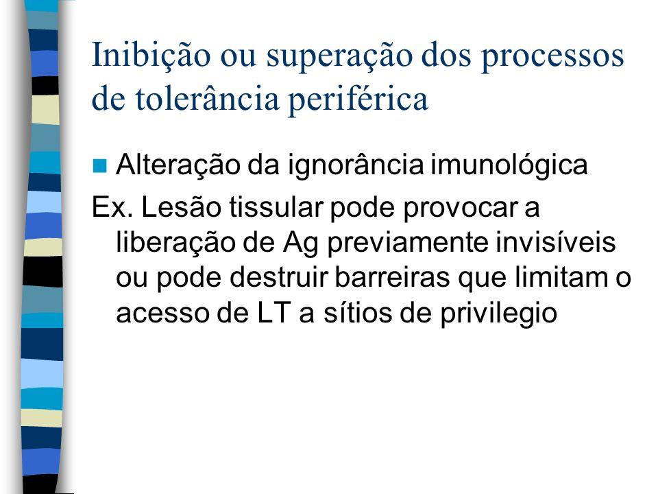 Inibição ou superação dos processos de tolerância periférica Alteração da ignorância imunológica Ex. Lesão tissular pode provocar a liberação de Ag pr