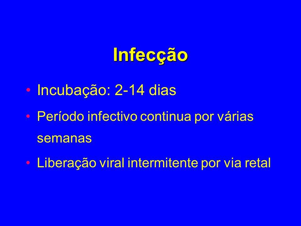 Infecção Incubação: 2-14 dias Período infectivo continua por várias semanas Liberação viral intermitente por via retal