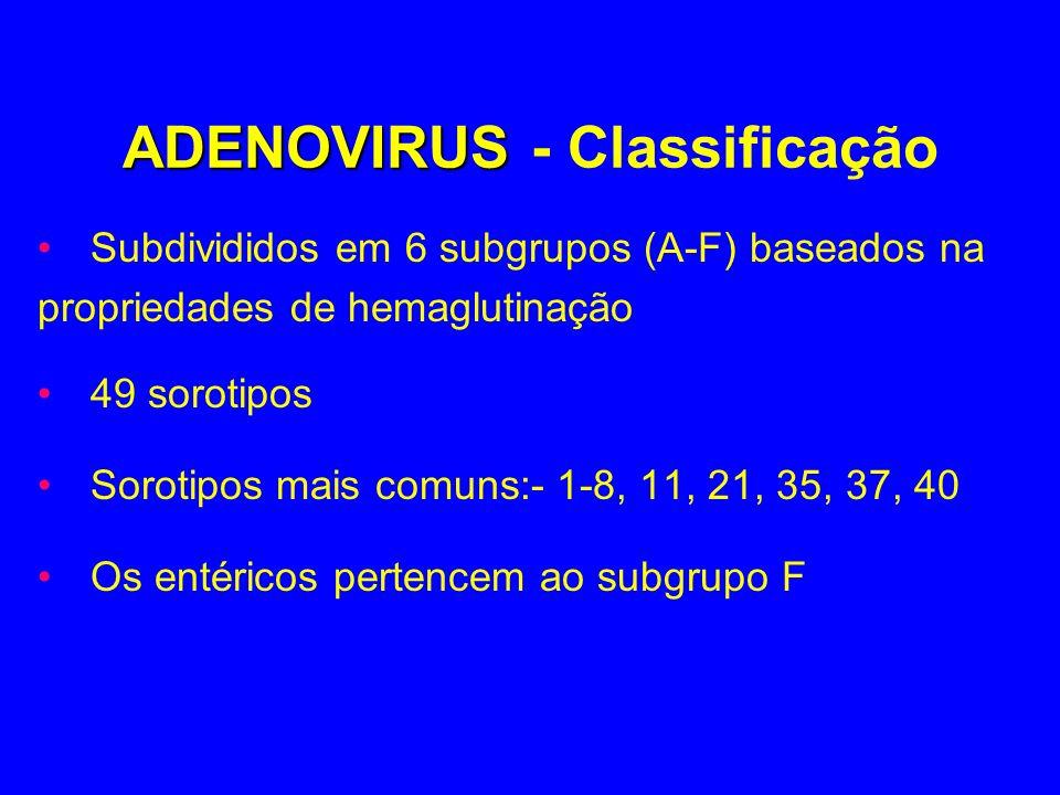 ADENOVIRUS ADENOVIRUS - Classificação Subdivididos em 6 subgrupos (A-F) baseados na propriedades de hemaglutinação 49 sorotipos Sorotipos mais comuns: