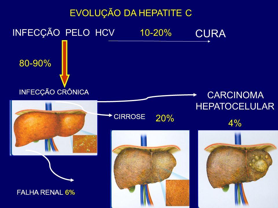EVOLUÇÃO DA HEPATITE C 10-20% CURA INFECÇÃO PELO HCV INFECÇÃO CRÔNICA CARCINOMA HEPATOCELULAR 4% 20% 80-90% Hepatite Fulminante Hepatite Fulminante CIRROSE FALHA RENAL 6%