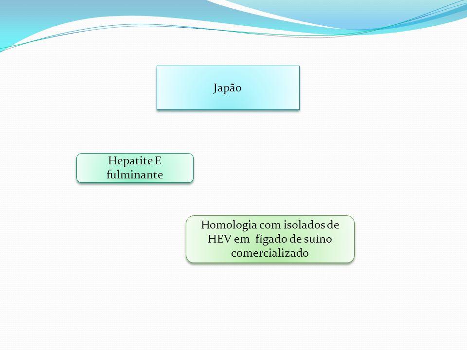 Japão Hepatite E fulminante Homologia com isolados de HEV em fígado de suíno comercializado