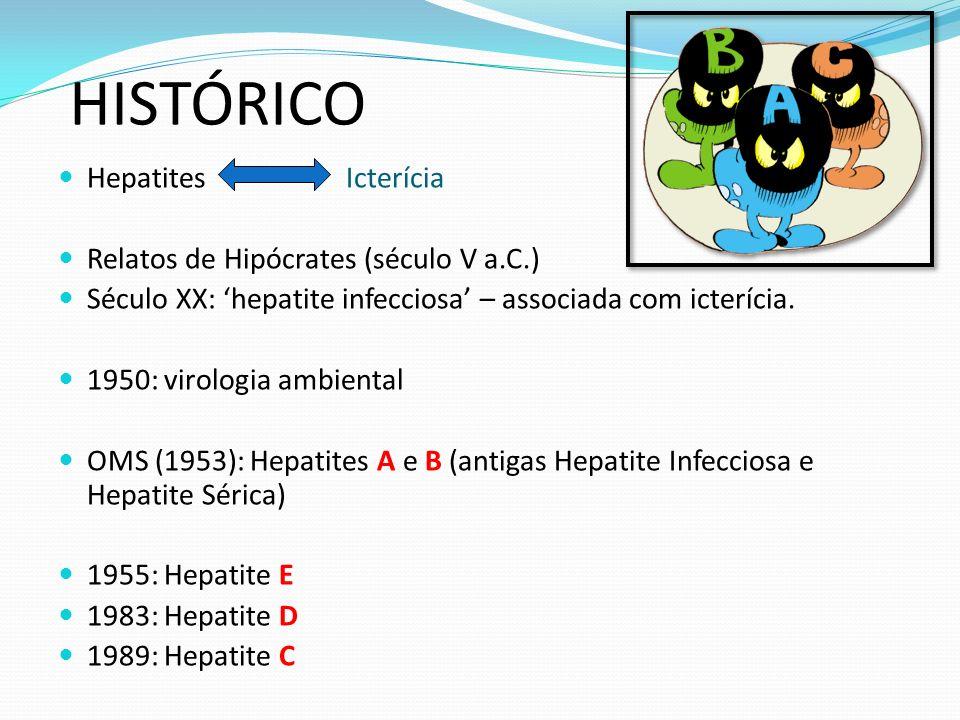 HISTÓRICO Hepatites Icterícia Relatos de Hipócrates (século V a.C.) Século XX: hepatite infecciosa – associada com icterícia.