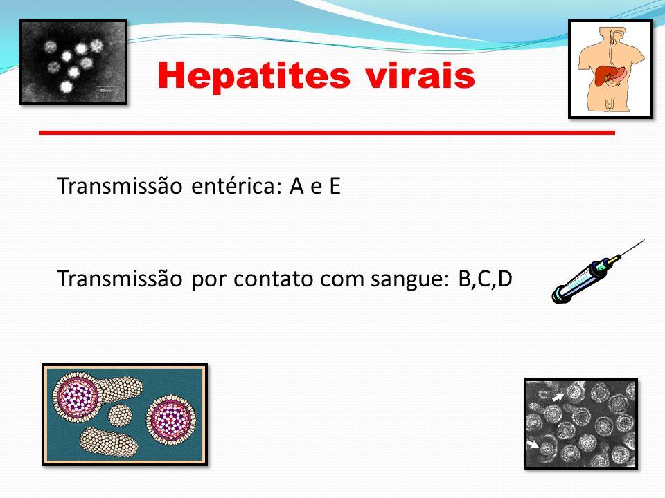 Hepatites virais Transmissão entérica: A e E Transmissão por contato com sangue: B,C,D