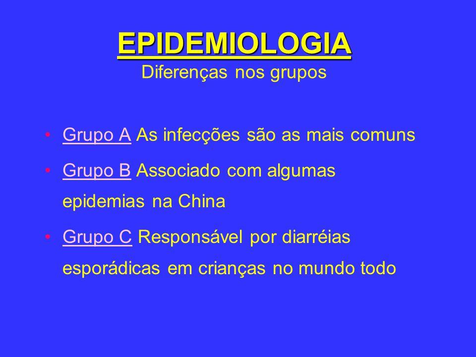 EPIDEMIOLOGIA EPIDEMIOLOGIA Diferenças nos grupos Grupo A As infecções são as mais comuns Grupo B Associado com algumas epidemias na China Grupo C Res