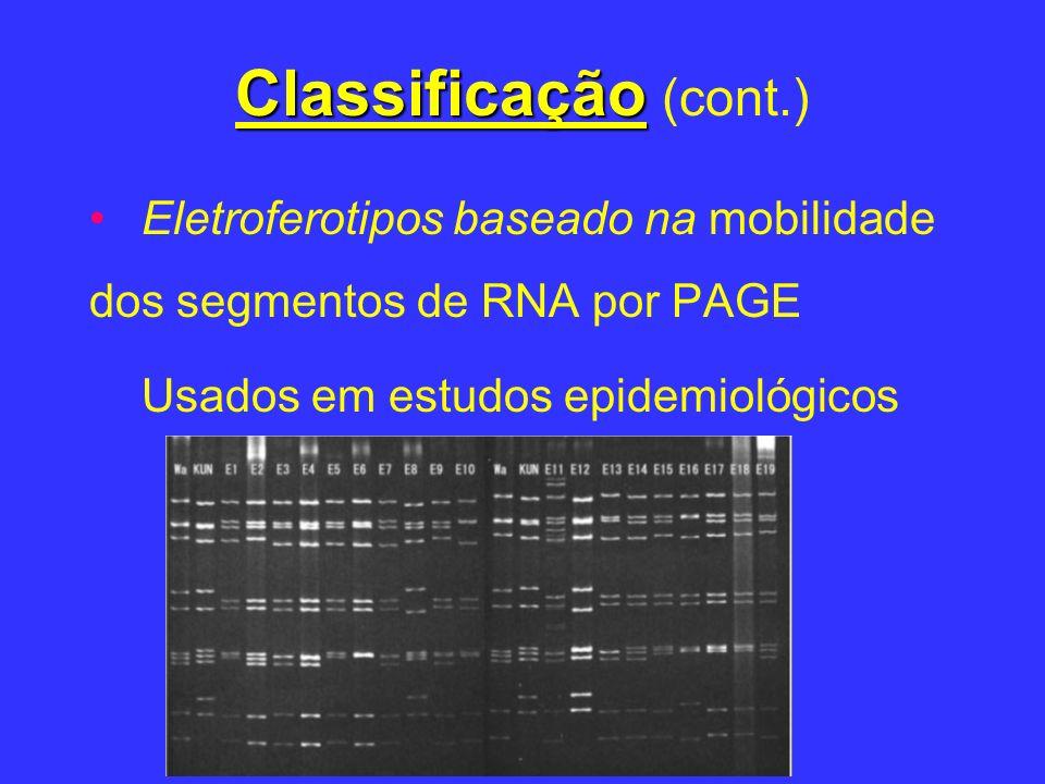 Classificação Classificação (cont.) Eletroferotipos baseado na mobilidade dos segmentos de RNA por PAGE Usados em estudos epidemiológicos
