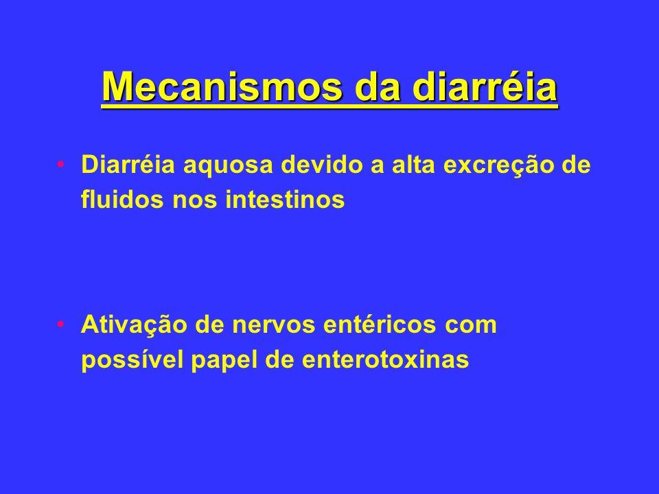 Mecanismos da diarréia Diarréia aquosa devido a alta excreção de fluidos nos intestinos Ativação de nervos entéricos com possível papel de enterotoxin