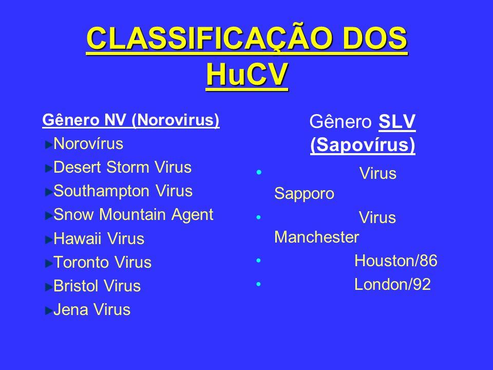 CLASSIFICAÇÃO DOS HuCV Gênero NV (Norovirus) Norovírus Desert Storm Virus Southampton Virus Snow Mountain Agent Hawaii Virus Toronto Virus Bristol Vir
