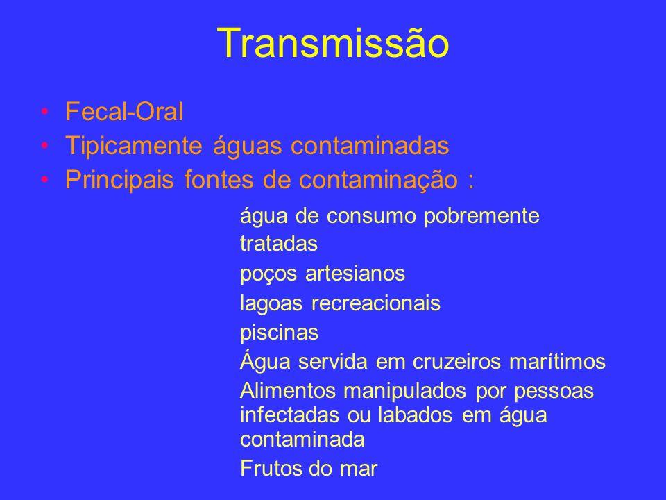 Transmissão Fecal-Oral Tipicamente águas contaminadas Principais fontes de contaminação : água de consumo pobremente tratadas poços artesianos lagoas