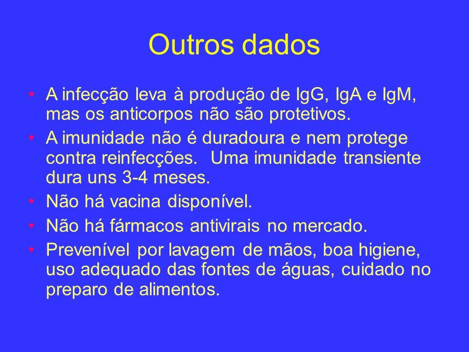 Outros dados A infecção leva à produção de IgG, IgA e IgM, mas os anticorpos não são protetivos. A imunidade não é duradoura e nem protege contra rein