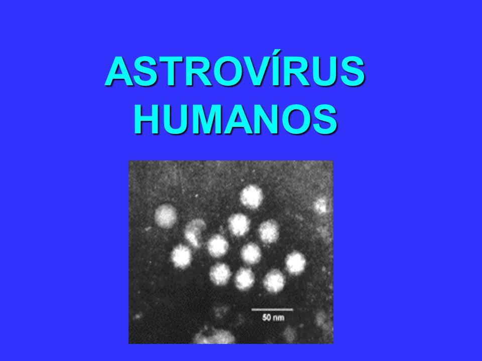 ASTROVÍRUS HUMANOS