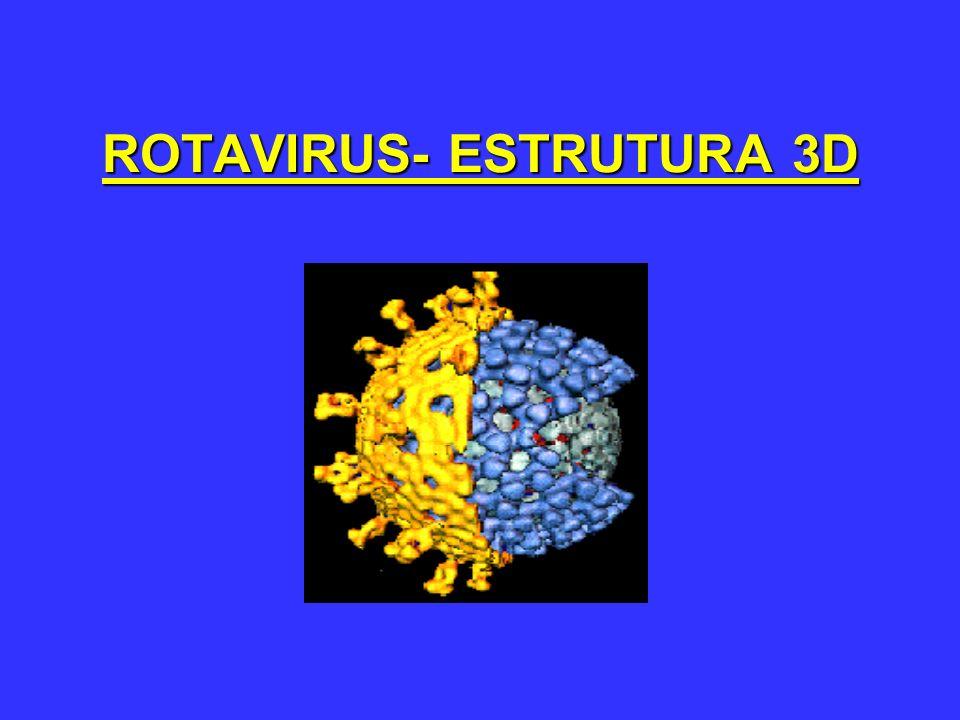 Proteínas de Estrutura Viral (VP) Proteínas estruturais do Capsídeo Externo VP7 e VP4 VP7 VP7=glicoproteina VP4 VP4= proteina P, clivada por protease (tripsina), hemaglutinina viral e formadora de espículas de superfície Proteínas estruturais internas (core) VP1, 2, 3, 6 VP6 é um importante determinante antigênico e responsável pelos grupos