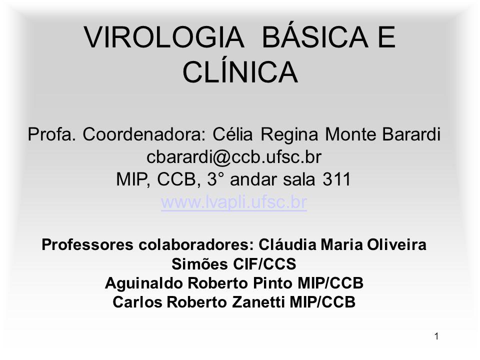 1 VIROLOGIA BÁSICA E CLÍNICA Profa. Coordenadora: Célia Regina Monte Barardi cbarardi@ccb.ufsc.br MIP, CCB, 3° andar sala 311 www.lvapli.ufsc.br Profe