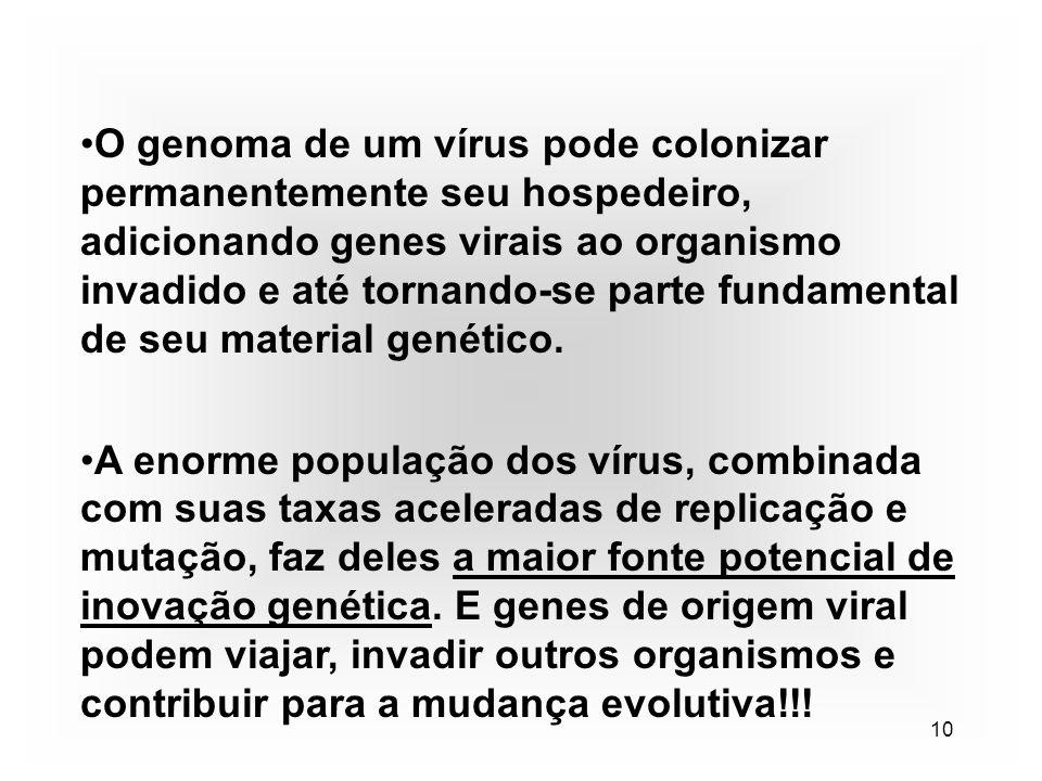 10 O genoma de um vírus pode colonizar permanentemente seu hospedeiro, adicionando genes virais ao organismo invadido e até tornando-se parte fundamen