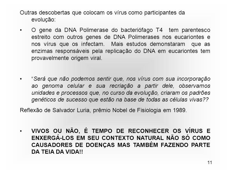 11 Outras descobertas que colocam os vírus como participantes da evolução: O gene da DNA Polimerase do bacteriófago T4 tem parentesco estreito com outros genes de DNA Polimerases nos eucariontes e nos vírus que os infectam.