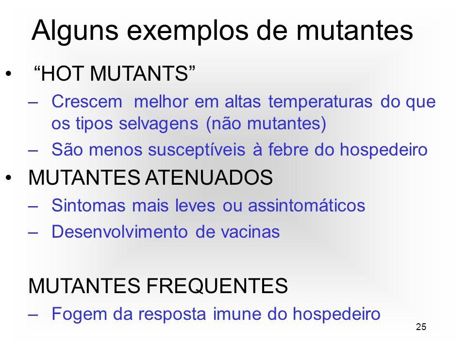 25 Alguns exemplos de mutantes HOT MUTANTS –Crescem melhor em altas temperaturas do que os tipos selvagens (não mutantes) –São menos susceptíveis à febre do hospedeiro MUTANTES ATENUADOS –Sintomas mais leves ou assintomáticos –Desenvolvimento de vacinas MUTANTES FREQUENTES –Fogem da resposta imune do hospedeiro