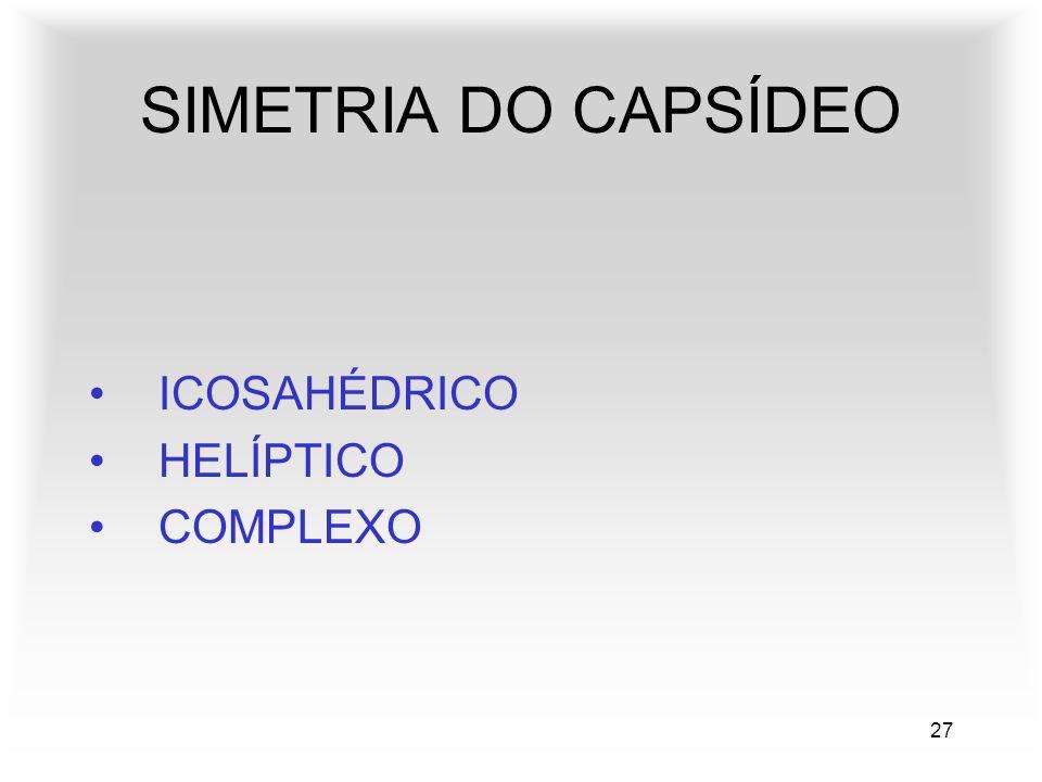 27 SIMETRIA DO CAPSÍDEO ICOSAHÉDRICO HELÍPTICO COMPLEXO