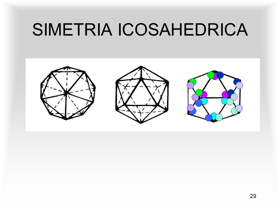 29 SIMETRIA ICOSAHEDRICA