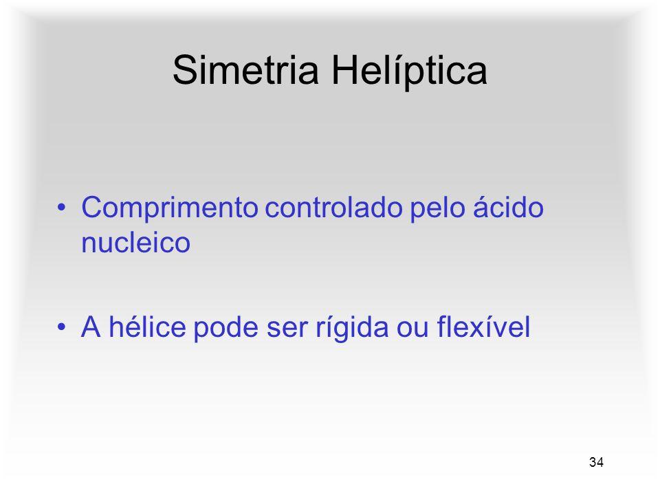 34 Simetria Helíptica Comprimento controlado pelo ácido nucleico A hélice pode ser rígida ou flexível
