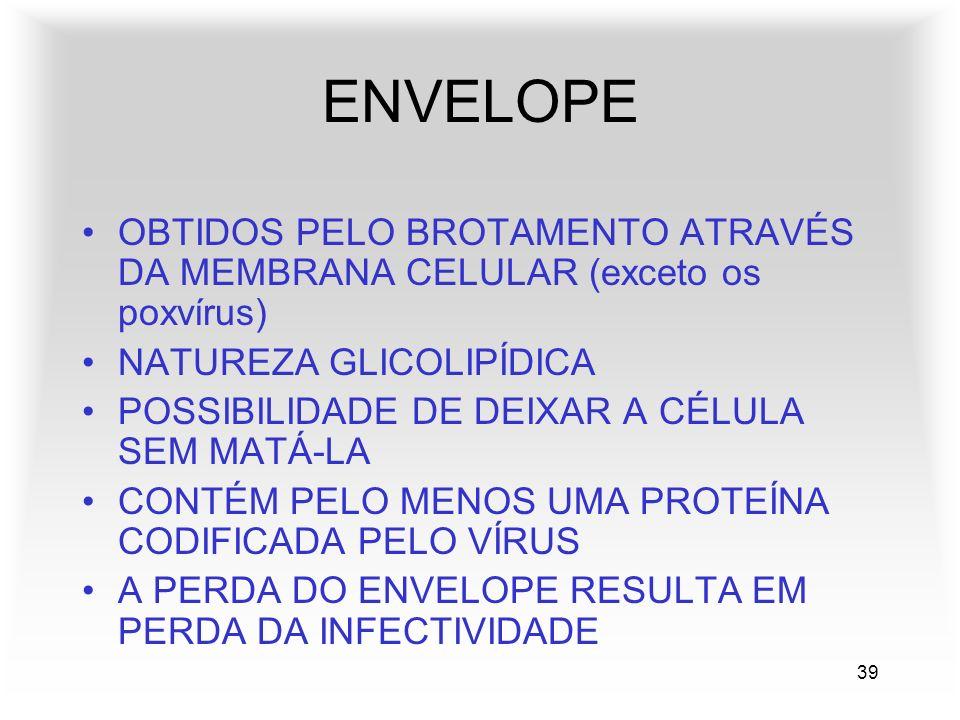 39 ENVELOPE OBTIDOS PELO BROTAMENTO ATRAVÉS DA MEMBRANA CELULAR (exceto os poxvírus) NATUREZA GLICOLIPÍDICA POSSIBILIDADE DE DEIXAR A CÉLULA SEM MATÁ-LA CONTÉM PELO MENOS UMA PROTEÍNA CODIFICADA PELO VÍRUS A PERDA DO ENVELOPE RESULTA EM PERDA DA INFECTIVIDADE