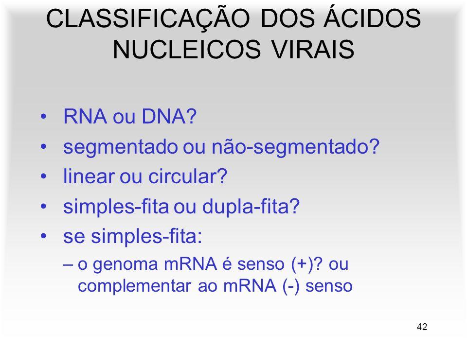 42 RNA ou DNA? segmentado ou não-segmentado? linear ou circular? simples-fita ou dupla-fita? se simples-fita: –o genoma mRNA é senso (+)? ou complemen