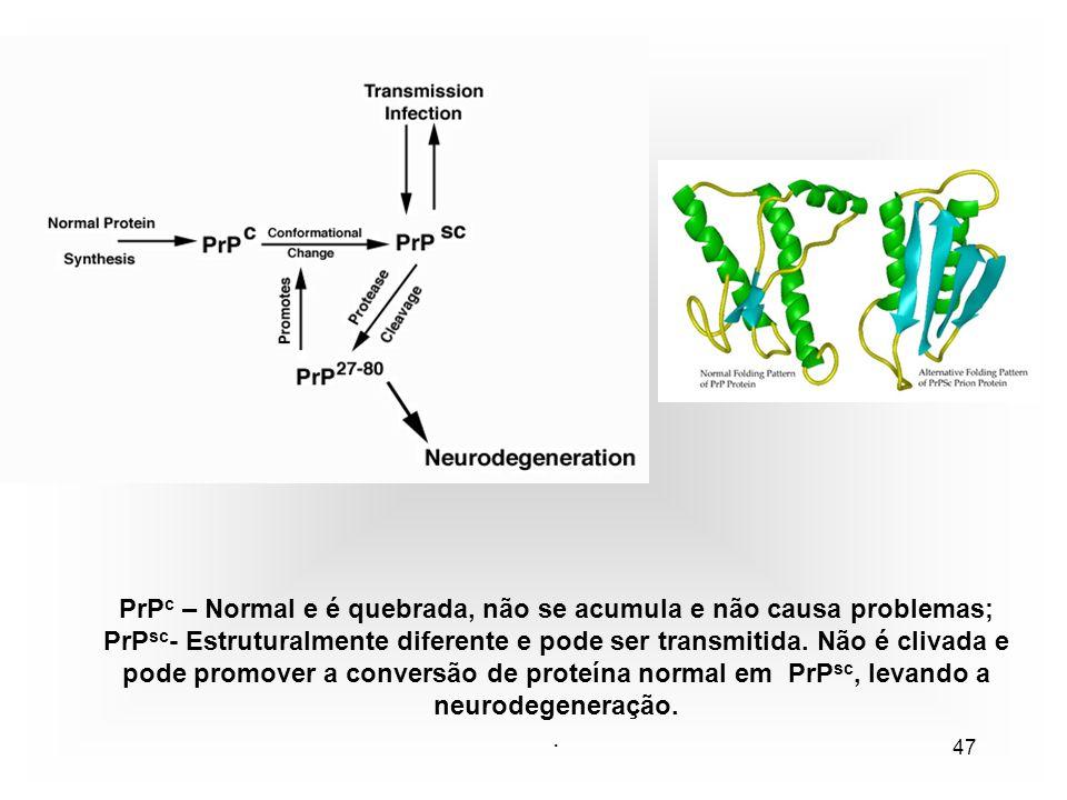 47 PrP c – Normal e é quebrada, não se acumula e não causa problemas; PrP sc - Estruturalmente diferente e pode ser transmitida.