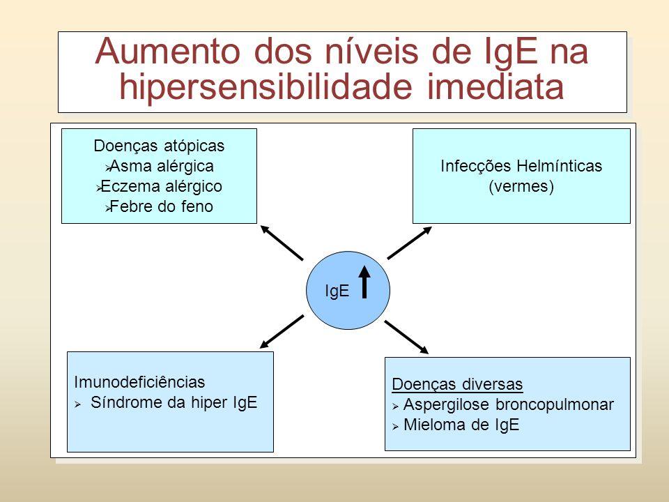 LB Histamina, triptase, cininogenase Leucotrienos-B4, C4, D4, prostaglandinas D Mediadores recem sintetizados TH2 Sensibilização com alérgenos e hiper