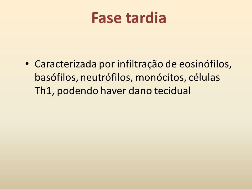 Fase Imediata Caracterizada por vasodilatação, aumento da permeabilidade capilar, espasmo das células musculares lisas e secreção glandular, iniciada
