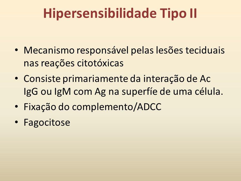 Hipersensibilidade tipo II (mediada por Ac)