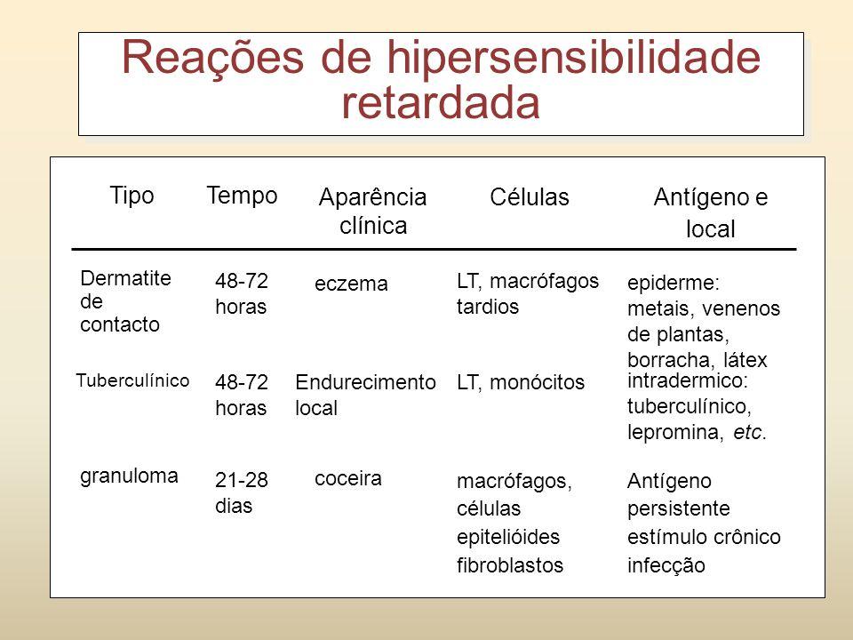 Respostas iniciadas por LT – hipersensibilidade do tipo tardia; Apresenta dois estágios: sensibilização e desafio; 1- Sensibilização: (1 a 2 semanas)