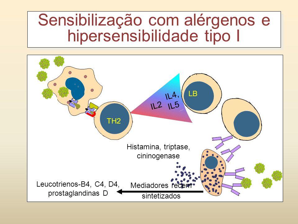 Sensibilização Contato com o alérgeno; Apresentação de Ag; Indução de Resposta Th2 (IL-4, IL-5, IL-10, IL-13); Produção de IgE através de exposições r