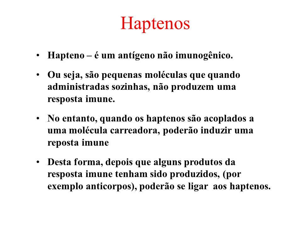 Haptenos Hapteno – é um antígeno não imunogênico. Ou seja, são pequenas moléculas que quando administradas sozinhas, não produzem uma resposta imune.