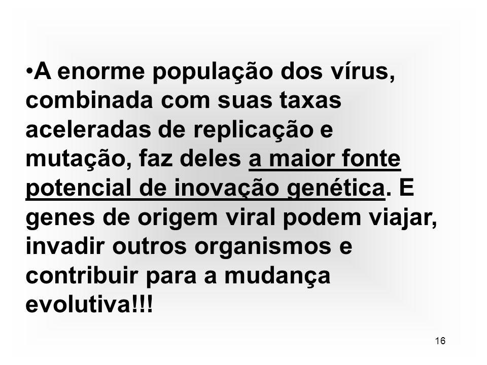16 A enorme população dos vírus, combinada com suas taxas aceleradas de replicação e mutação, faz deles a maior fonte potencial de inovação genética.