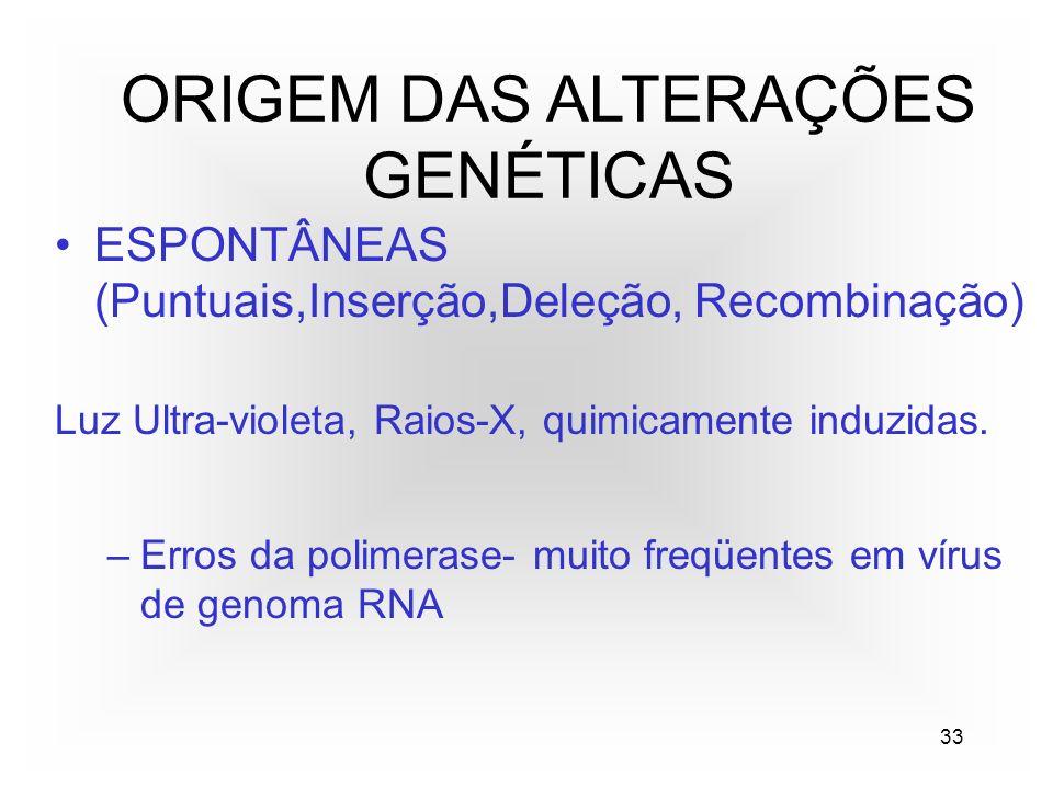 33 ORIGEM DAS ALTERAÇÕES GENÉTICAS ESPONTÂNEAS (Puntuais,Inserção,Deleção, Recombinação) Luz Ultra-violeta, Raios-X, quimicamente induzidas.