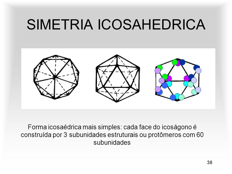 38 SIMETRIA ICOSAHEDRICA Forma icosaédrica mais simples: cada face do icoságono é construída por 3 subunidades estruturais ou protômeros com 60 subunidades
