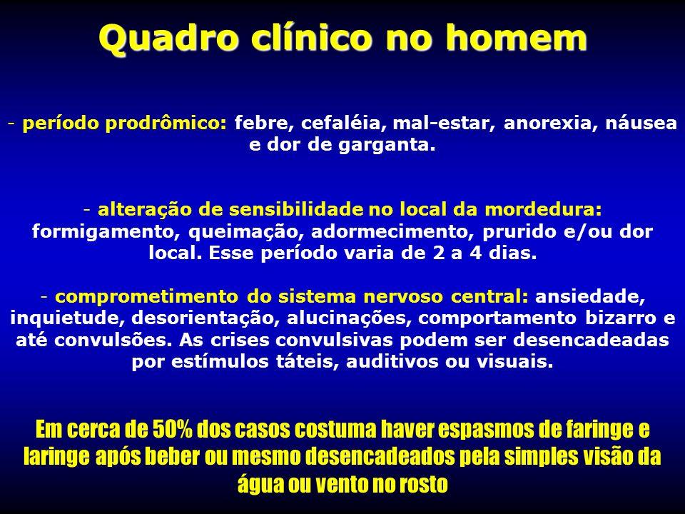 Quadro clínico no homem - - período prodrômico: febre, cefaléia, mal-estar, anorexia, náusea e dor de garganta. - - alteração de sensibilidade no loca