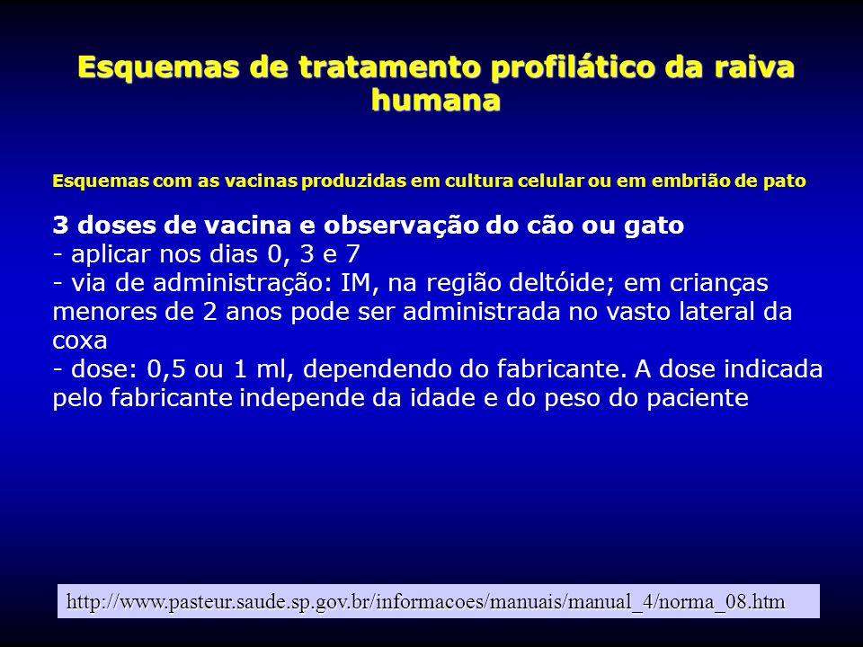 Esquemas de tratamento profilático da raiva humana Esquemas com as vacinas produzidas em cultura celular ou em embrião de pato 3 doses de vacina e obs