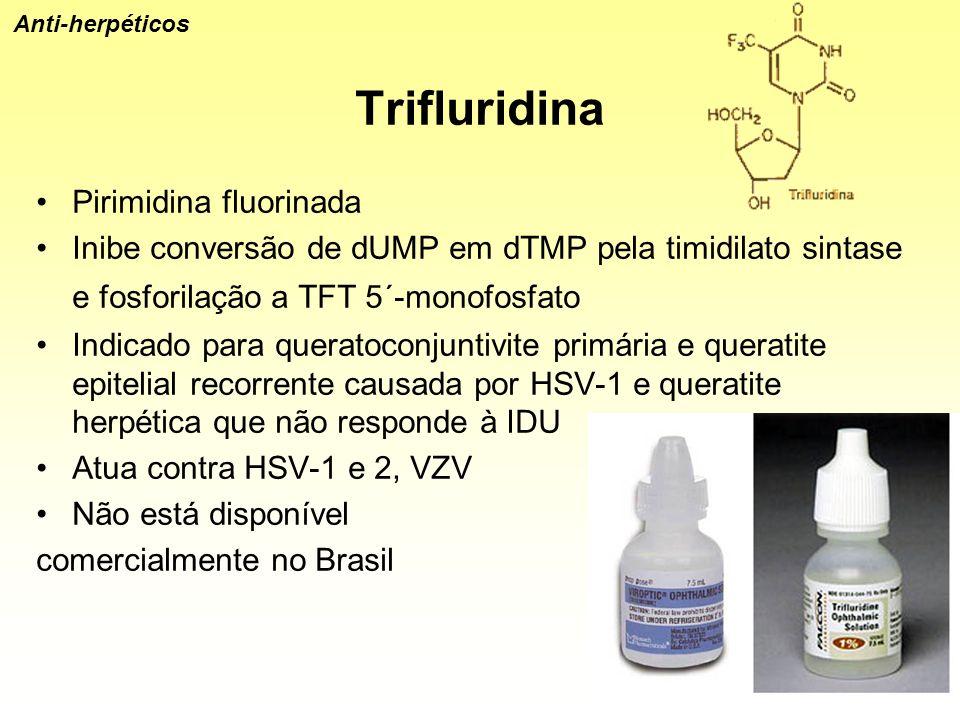 Trifluridina Pirimidina fluorinada Inibe conversão de dUMP em dTMP pela timidilato sintase e fosforilação a TFT 5´-monofosfato Indicado para queratoco
