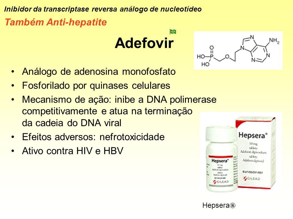 Adefovir Análogo de adenosina monofosfato Fosforilado por quinases celulares Mecanismo de ação: inibe a DNA polimerase competitivamente e atua na term