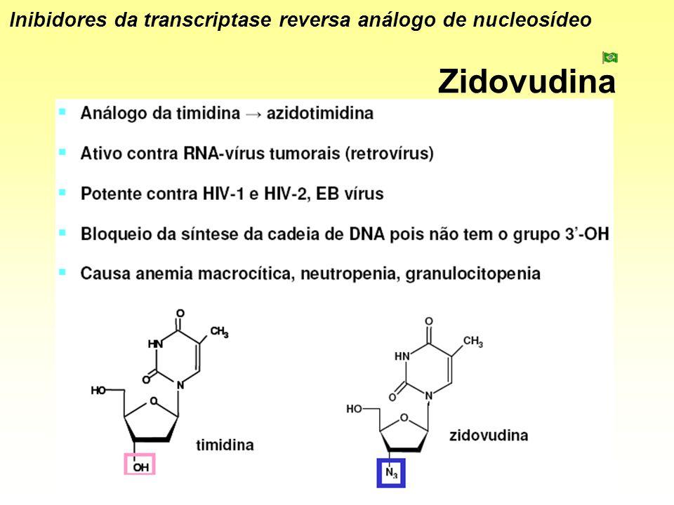Zidovudina Inibidores da transcriptase reversa análogo de nucleosídeo