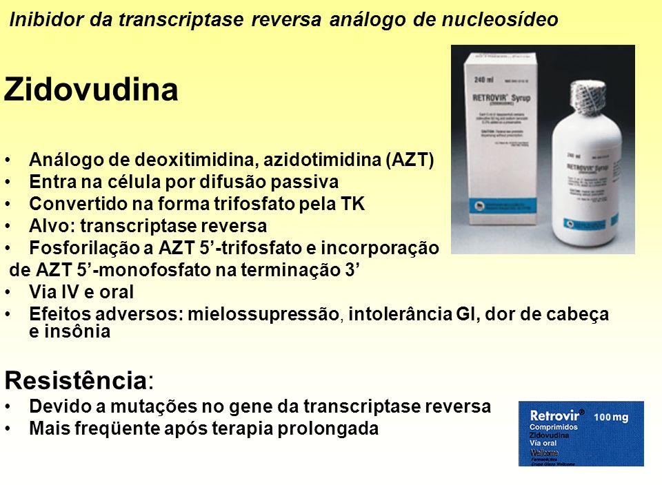 Zidovudina Análogo de deoxitimidina, azidotimidina (AZT) Entra na célula por difusão passiva Convertido na forma trifosfato pela TK Alvo: transcriptas