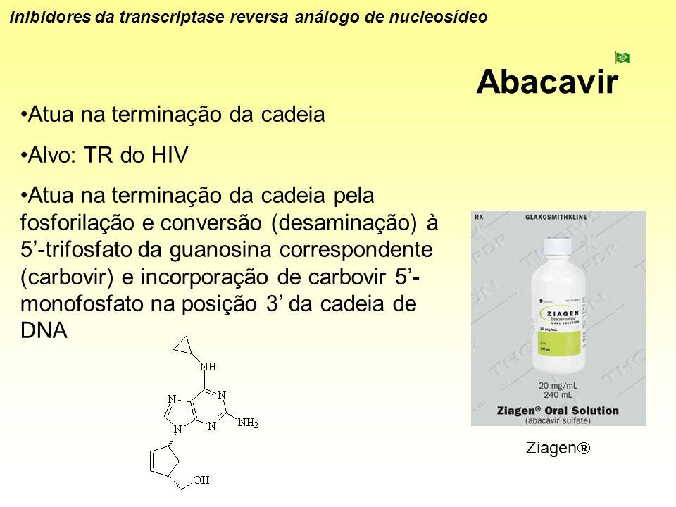 Abacavir Inibidores da transcriptase reversa análogo de nucleosídeo Atua na terminação da cadeia Alvo: TR do HIV Atua na terminação da cadeia pela fos