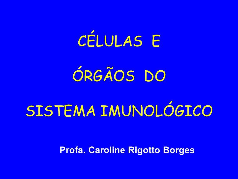 CÉLULAS E ÓRGÃOS DO SISTEMA IMUNOLÓGICO Profa. Caroline Rigotto Borges