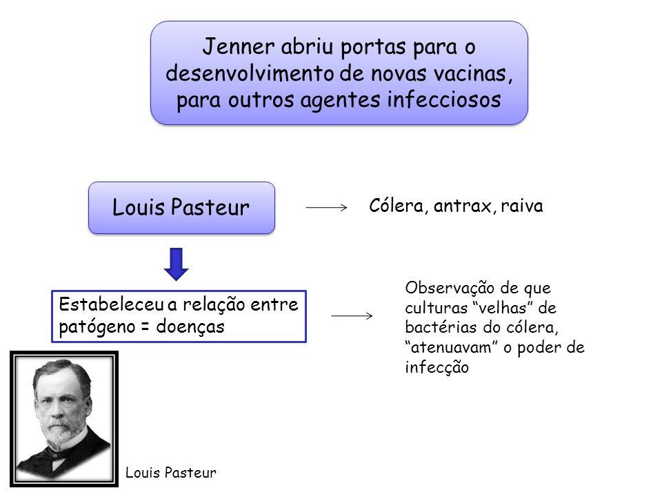 Jenner abriu portas para o desenvolvimento de novas vacinas, para outros agentes infecciosos Louis Pasteur Cólera, antrax, raiva Estabeleceu a relação
