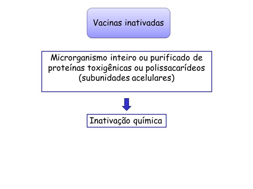 Vacinas inativadas Microrganismo inteiro ou purificado de proteínas toxigênicas ou polissacarídeos (subunidades acelulares) Inativação química