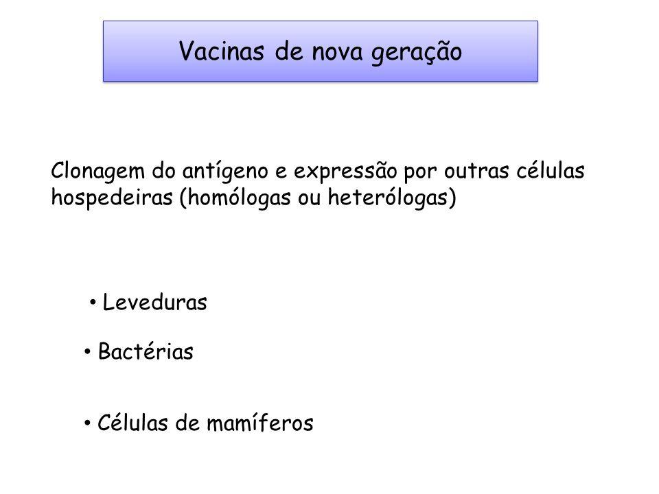 Vacinas de nova geração Clonagem do antígeno e expressão por outras células hospedeiras (homólogas ou heterólogas) Leveduras Bactérias Células de mamí